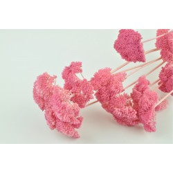 Bouquet de 100 g